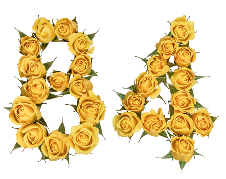 computation: Arabic numeral 84, eighty four, from yellow flowers of rose, isolated on white background