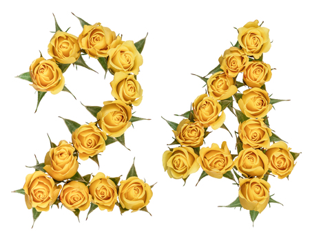 Arabic numeral 24, twenty four, from yellow flowers of rose, isolated on white background