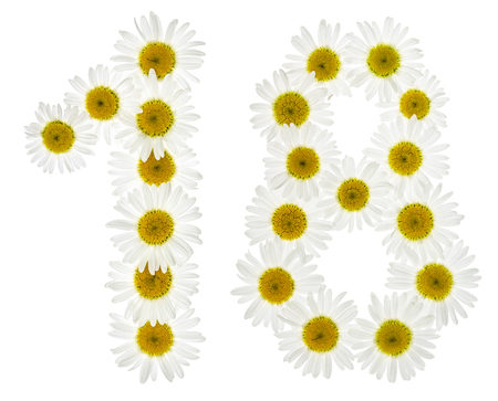 arabic number: Arabic numeral 18, eighteen, from white flowers of chamomile, isolated on white background
