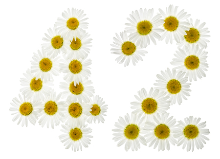 Arabic numeral 42, forty two, from white flowers of chamomile, isolated on white background Stock Photo