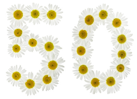 Arabic numeral 50, fifty, five, from white flowers of chamomile, isolated on white background