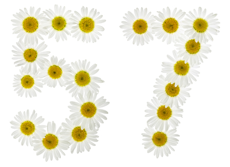 Arabic numeral 57, fifty seven, from white flowers of chamomile, isolated on white background Stock Photo