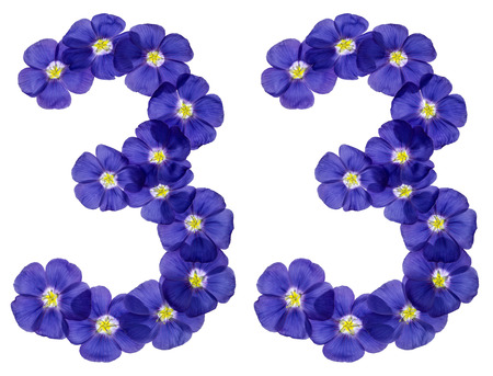 Arabic numeral 33, thirty three, from blue flowers of flax, isolated on white background