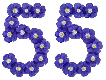 Arabic numeral 55, fifty five, from blue flowers of flax, isolated on white background Stock Photo