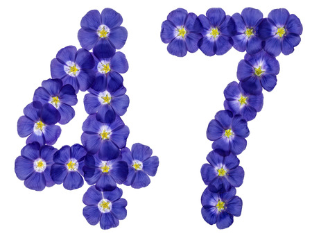 computation: Arabic numeral 47, forty seven, from blue flowers of flax, isolated on white background Stock Photo