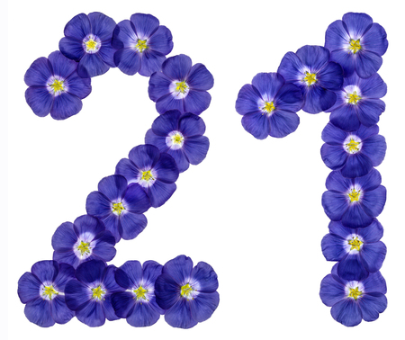computation: Arabic numeral 21, twenty one, twenty, from blue flowers of flax, isolated on white background