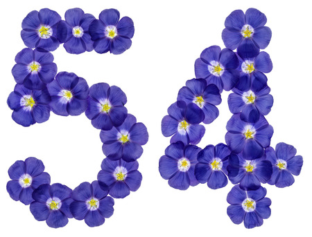 computation: Arabic numeral 54, fifty four, from blue flowers of flax, isolated on white background