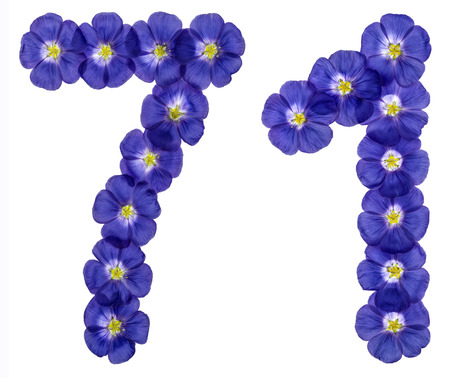 computation: Arabic numeral 71, seventy one, from blue flowers of flax, isolated on white background Stock Photo