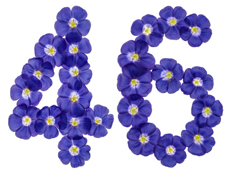 ordinal: Arabic numeral 46, forty six, from blue flowers of flax, isolated on white background Stock Photo