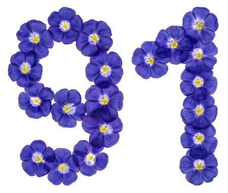 numero nueve: Número árabe 91, noventa y uno, de las flores azules de lino, aisladas sobre fondo blanco