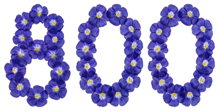 ordinal: Arabic numeral 800, eight hundred, from blue flowers of flax, isolated on white background