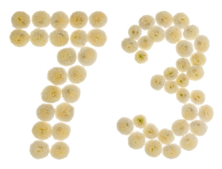 Arabic numeral 73, seventy three, from cream flowers of chrysanthemum, isolated on white background Stock Photo