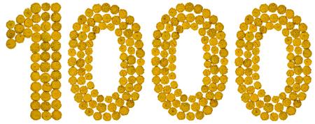 Arabisch cijfer 1000, duizend, van gele bloemen van boerenwormkruid, geïsoleerd op witte achtergrond De boerenwormkruid - een plant van de familie van de daisy met gele flat-topped knopachtige bloemknoppen en aromatische bladeren, voorheen gebruikt in de keuken en medicijnen.