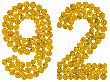 ninety: Arabic numeral 92, ninety two, from yellow flowers of tansy, isolated on white background The tansy - a plant of the daisy family with yellow flat-topped buttonlike flower heads and aromatic leaves, formerly used in cooking and medicine.