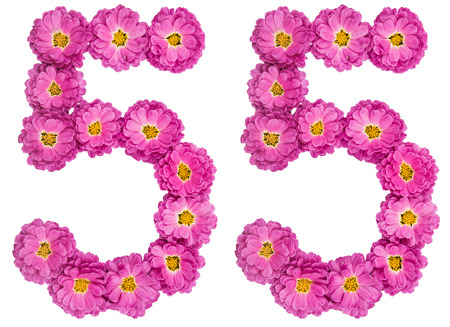 Arabic numeral 55, fifty five, from flowers of chrysanthemum, isolated on white background Stock Photo