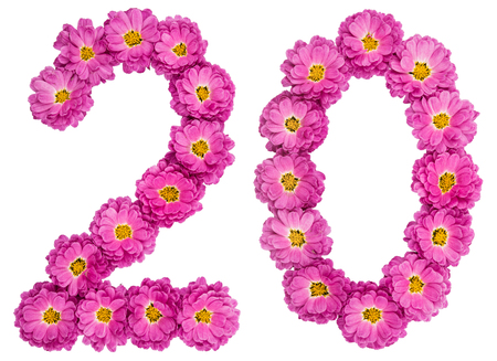 Arabic numeral 20, twenty, from flowers of chrysanthemum, isolated on white background