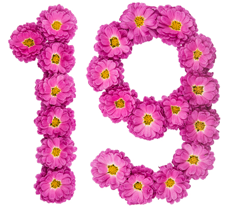 Arabic numeral 19, nineteen, from flowers of chrysanthemum, isolated on white background