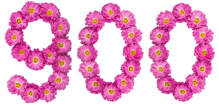 Arabic numeral 900, nine hundred, from flowers of chrysanthemum, isolated on white background 版權商用圖片