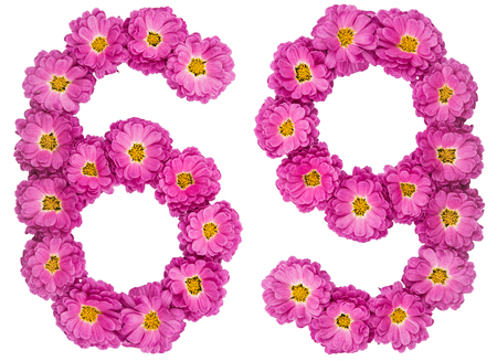 Arabic numeral 69, sixty nine, from flowers of chrysanthemum, isolated on white background Stock Photo