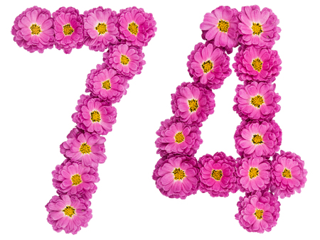 Arabic numeral 74, seventy four, from flowers of chrysanthemum, isolated on white background