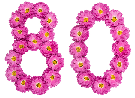 Arabic numeral 80, eighty, from flowers of chrysanthemum, isolated on white background