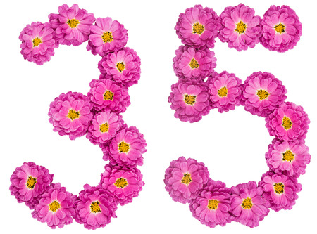 Arabic numeral 35, thirty five, from flowers of chrysanthemum, isolated on white background Stock Photo