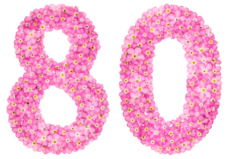 Arabic numeral 80, eighty, from pink forget-me-not flowers, isolated on white background
