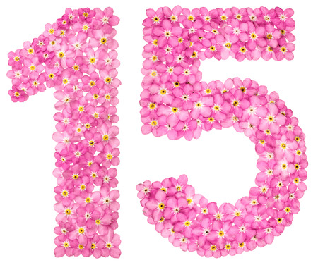 Arabic numeral 15, fifteen, from pink forget-me-not flowers, isolated on white background Stock Photo