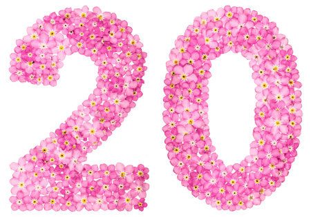 Arabic numeral 20, twenty, from pink forget-me-not flowers, isolated on white background