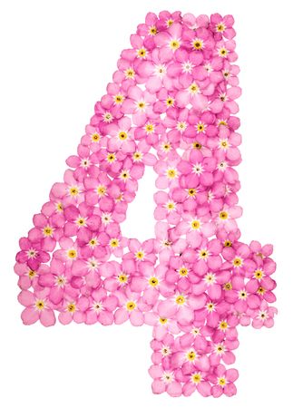 Arabic numeral 4 four from pink forget me not flowers isolated arabic numeral 4 four from pink forget me not flowers isolated mightylinksfo
