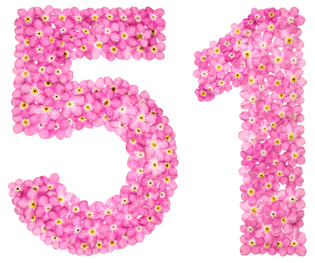 Arabic numeral 51, fifty one, from pink forget-me-not flowers, isolated on white background Stock Photo