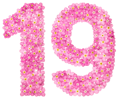 Arabic numeral 19, nineteen, from pink forget-me-not flowers, isolated on white background