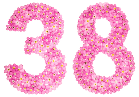 Arabic numeral 38, thirty eight, from pink forget-me-not flowers, isolated on white background