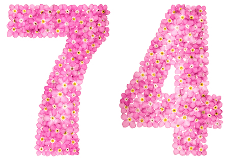 Arabic numeral 74, seventy four, from pink forget-me-not flowers, isolated on white background