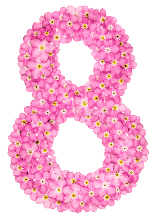 Arabic numeral 8, eight, from pink forget-me-not flowers, isolated on white background