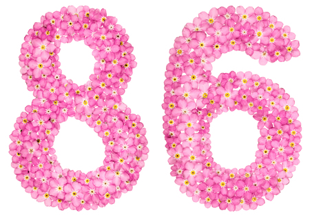 Arabic numeral 86, eighty six, from pink forget-me-not flowers, isolated on white background