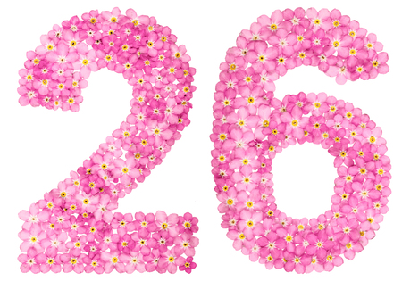 Arabic numeral 26, twenty six, from pink forget-me-not flowers, isolated on white background Stock Photo