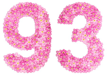 Arabic numeral 93, ninety three, from pink forget-me-not flowers, isolated on white background
