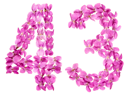 Arabic numeral 43, forty three, from flowers of viola, isolated on white background