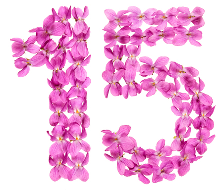 Arabic numeral 15, fifteen, from flowers of viola, isolated on white background