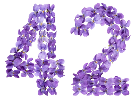 Arabic numeral 42, forty two, from flowers of viola, isolated on white background