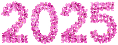 Numeral 2025 from flowers of viola, isolated on white background Stock Photo