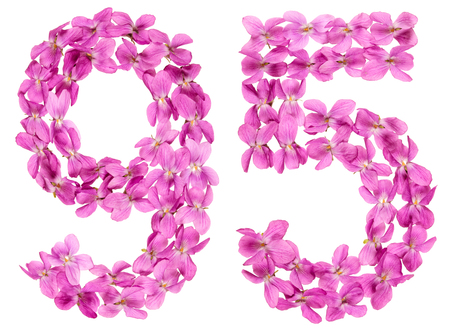 Arabic numeral 95, ninety five, from flowers of viola, isolated on white background