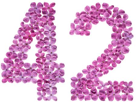 Arabic numeral 42, forty two, from flowers of lilac, isolated on white background