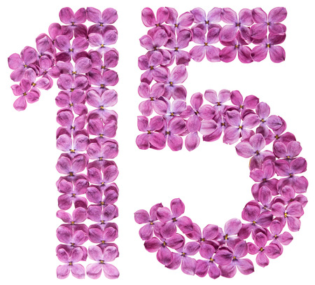 Arabic numeral 15, fifteen, from flowers of lilac, isolated on white background