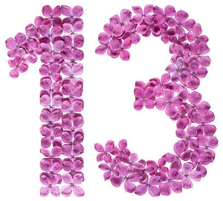 Arabic numeral 13, thirteen, from flowers of lilac, isolated on white background Фото со стока