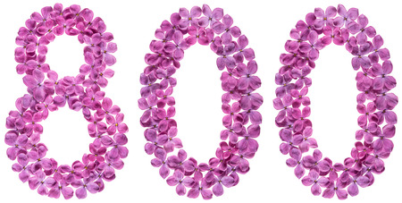 Arabic numeral 800, eight hundred, from flowers of lilac, isolated on white background