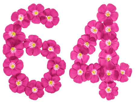 Arabic numeral 64, sixty four, from pink flowers of flax, isolated on white background