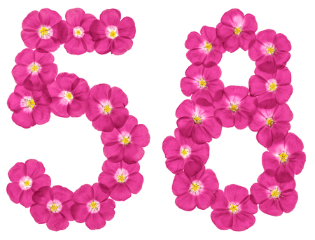 Arabic numeral 58, fifty eight, from pink flowers of flax, isolated on white background