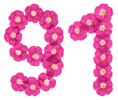 Arabic numeral 91 ninety one from pink flowers of flax isolated arabic numeral 91 ninety one from pink flowers of flax isolated on white mightylinksfo